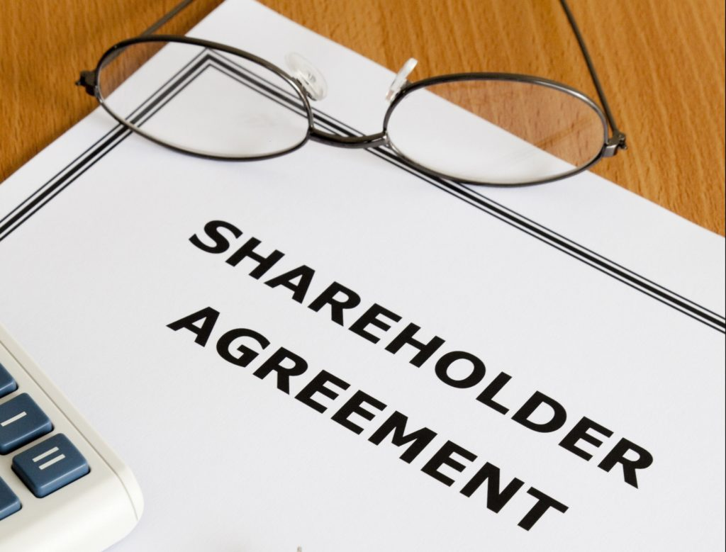 MAKE SURE YOU HAVE A SHAREHOLDERS' AGREEMENT HP Audit